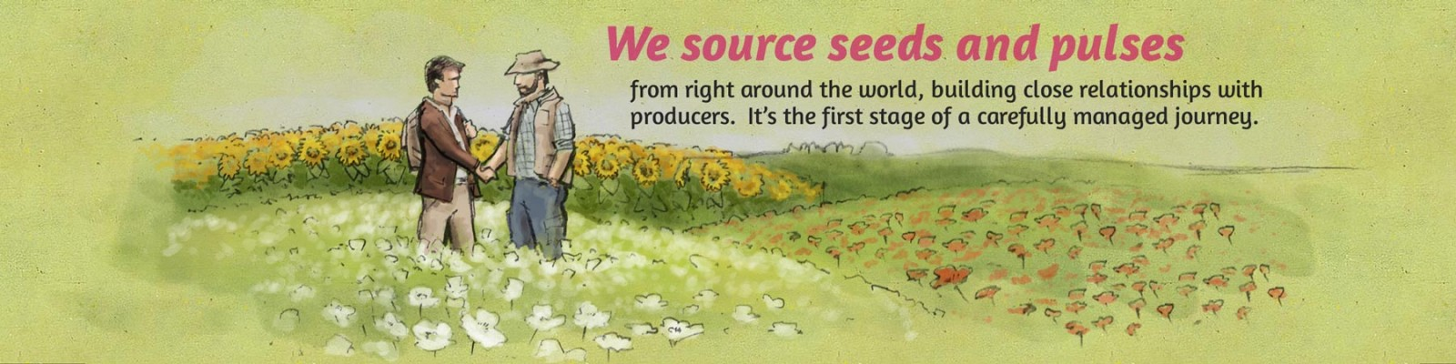 We source seeds and pulses
